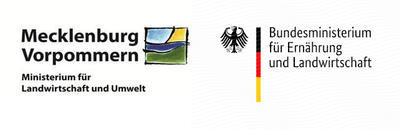 Dorferneuerung Garz / Rügen, Ausbau der Jahnstraße